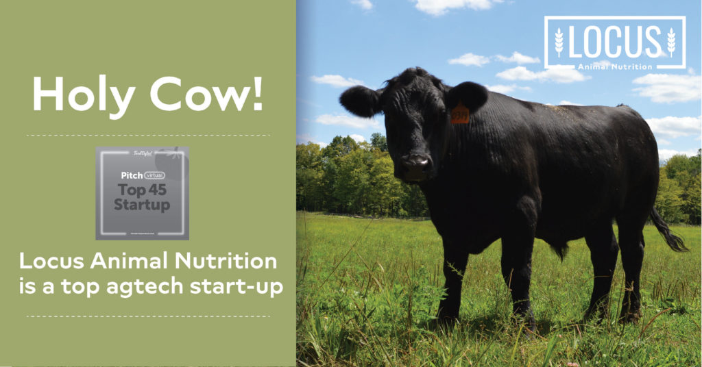 Rabobank FoodBytes! Pitch Names Locus Animal Nutrition A Top Startup